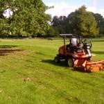 3 grass cutting (4)