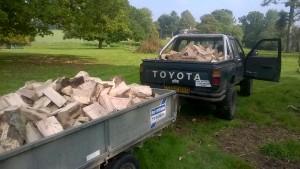logs (2)