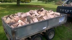 logs (3)