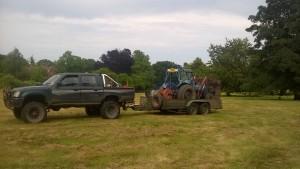 Roadside tree maintenance